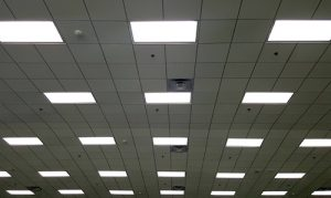View of energy efficient lighting in an office setting.