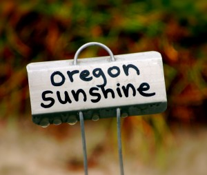 a little metal sign reading oregon sunshine